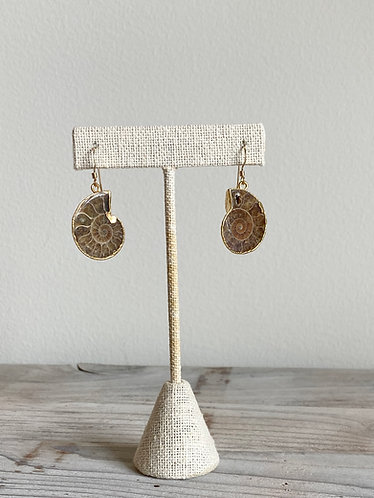 One of a Kind Ammonite Earrings in Gold #6