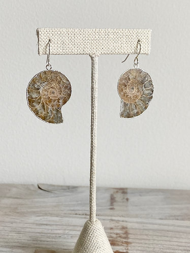 One of a Kind Ammonite Earrings in Silver #4