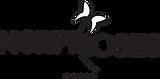 Logo Morphoses.png