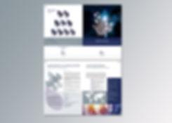 Brochure Startups Simon Associés