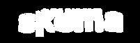 logo Skema blanc.png