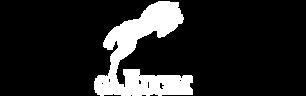 logo Gallucha blanc.png