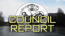 Annual Council Report - Cerelina Willie