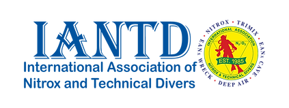Logo-IANTD-Horizontal-St-1985.png