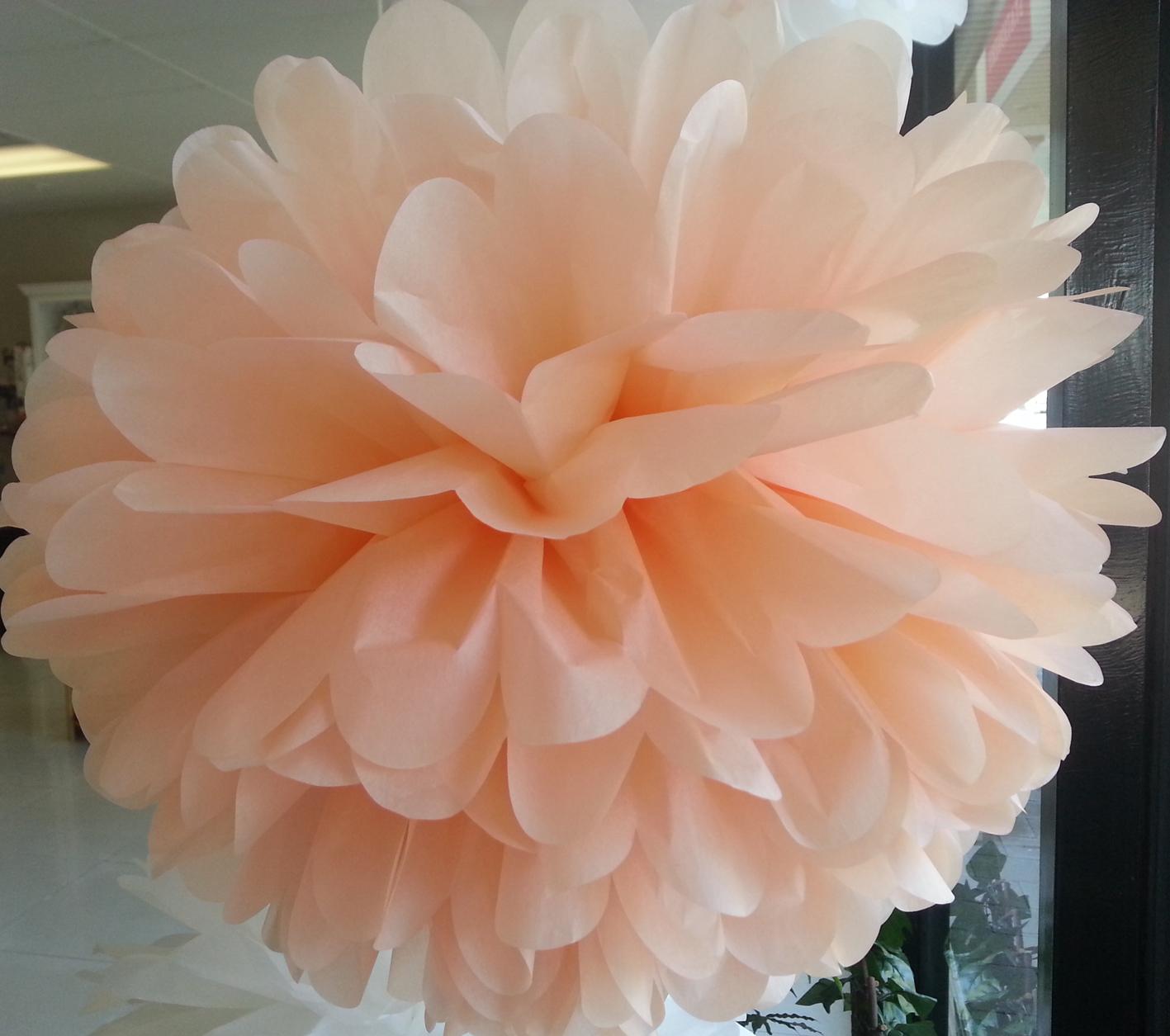 Peach+Tissue+Pom+Pom+Sydney.jpg