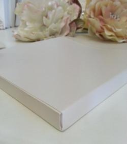 Metallic off white envelope 160mm envelope box Sydney Australia 2