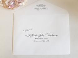Guest envelope addressing wedding printi