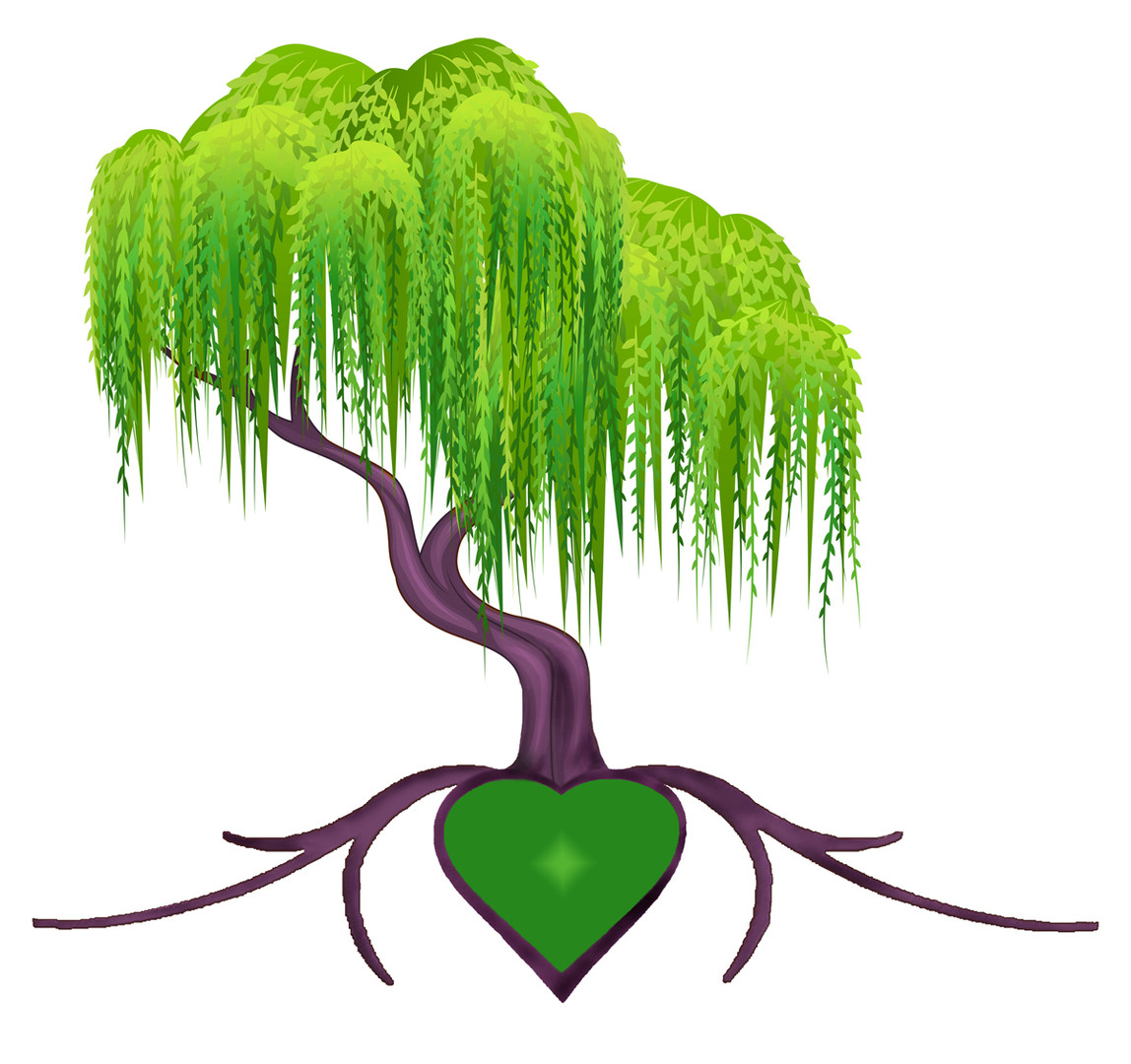 Willow Tree For Healing Tree Logo Placem