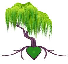 Willow Tree For Healing Tree Logo Placem