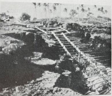 canoe ladder 1.JPG