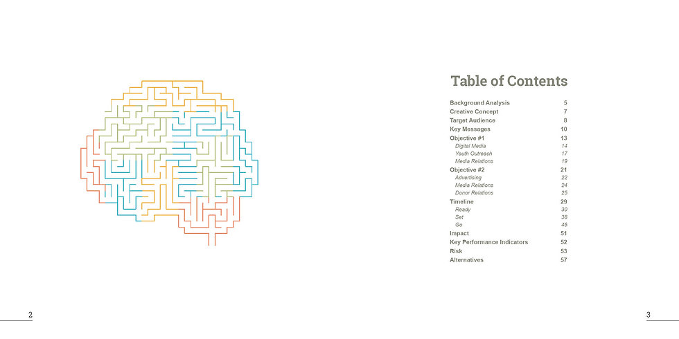 ACE-MentalMaze-Booklet2.jpg