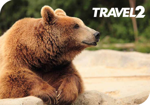 Canada's Wildlife & Vancouver Island