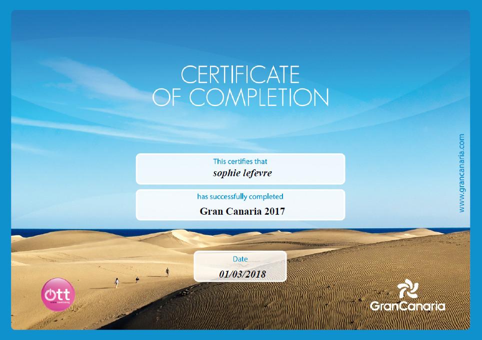 Icelandair online training programme