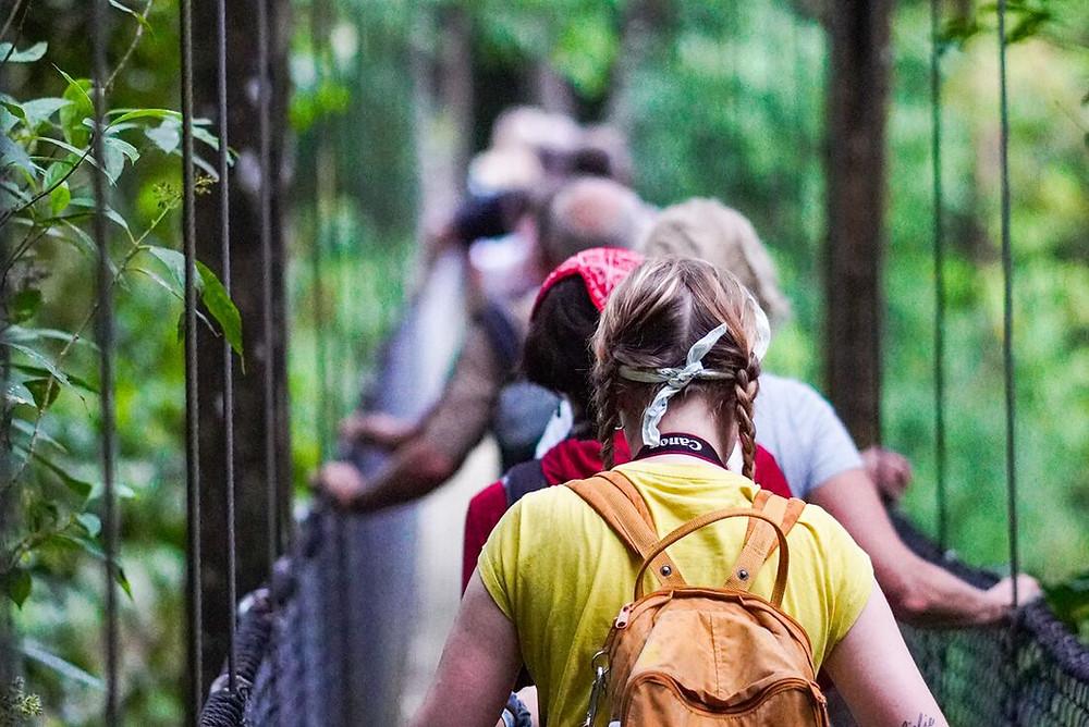 Mistico Arenal Hanging Bridges Park, Costa Rica. Photo courtesy of Intrepid Travel.