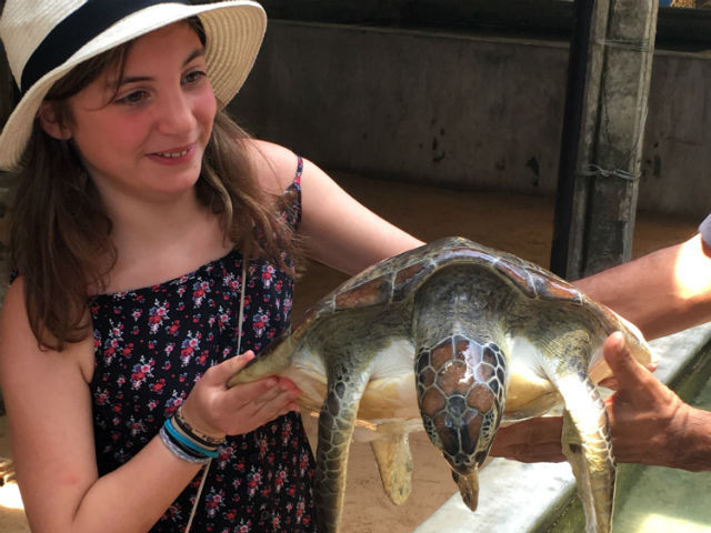 Matty comes out of her shell at the turtle hatchery in Kosgoda.