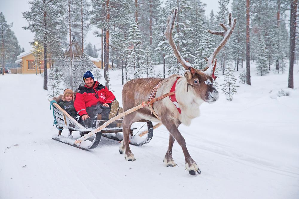 Santa's Lapland