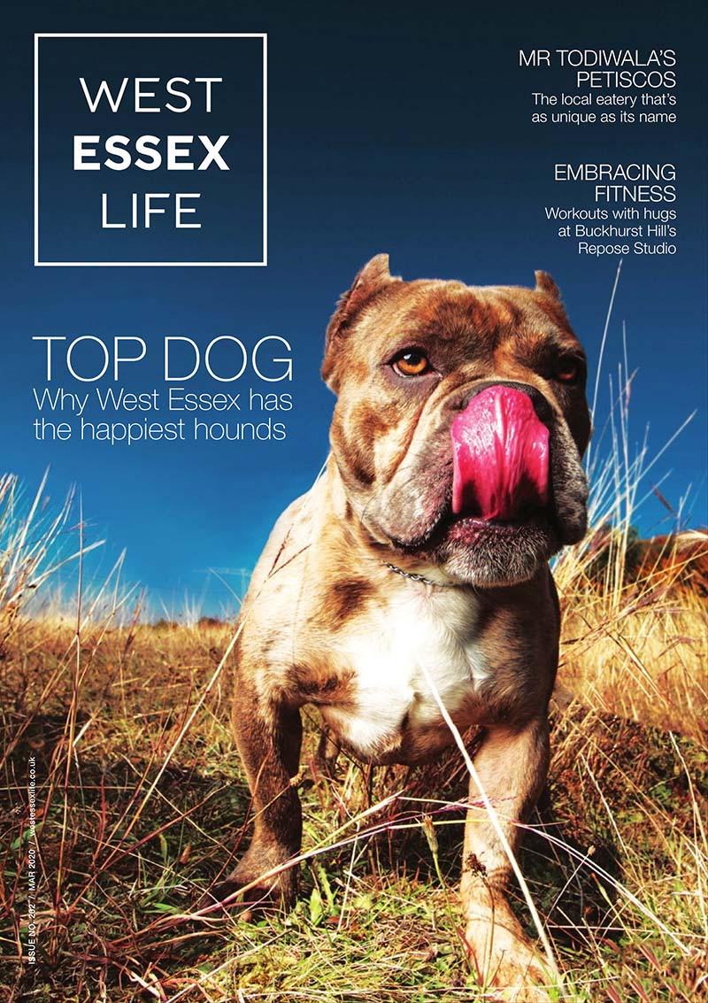 West Essex Life cover