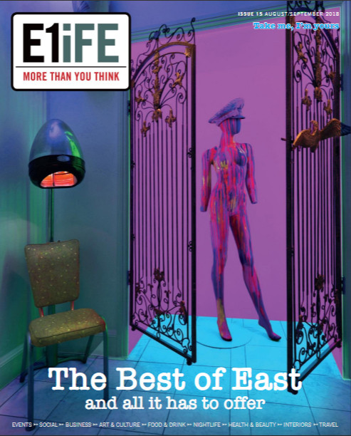 E1iFE cover