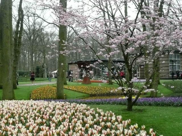 Another view of Keukenhof Gardens
