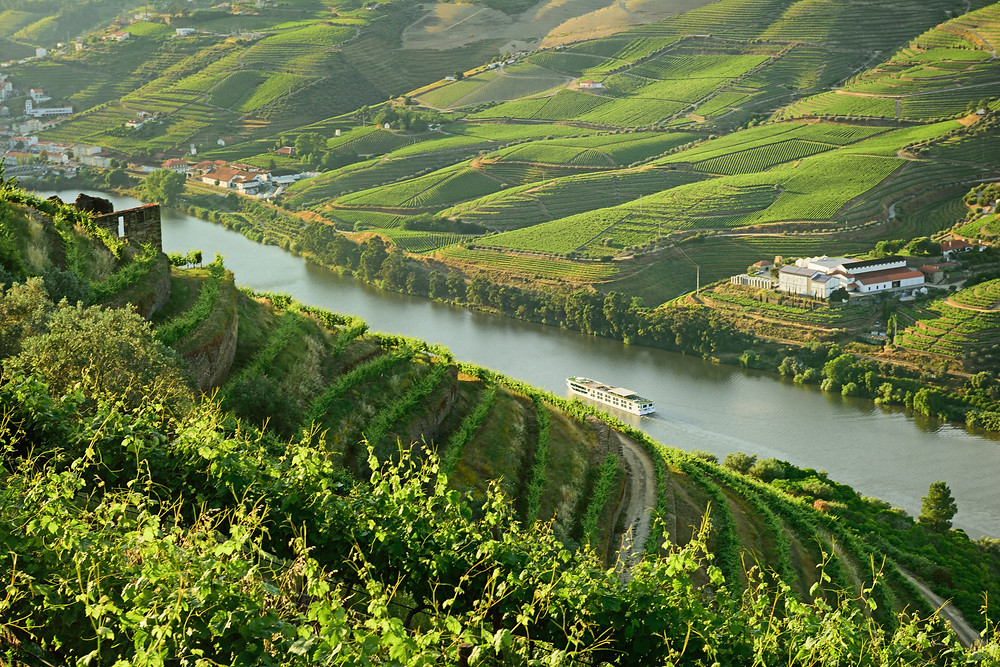 Scenic Azure River Cruise, Douro Valley, Portugal