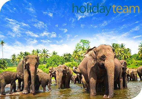 Sri Lanka Tour & Stay