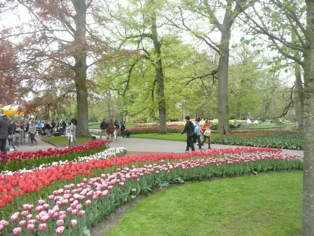 Another view of Keukenhof Gardens, Amsterdam
