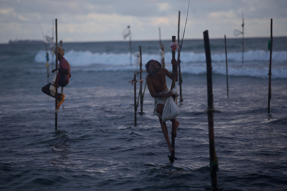 Stilt fishermen, Sri Lanka