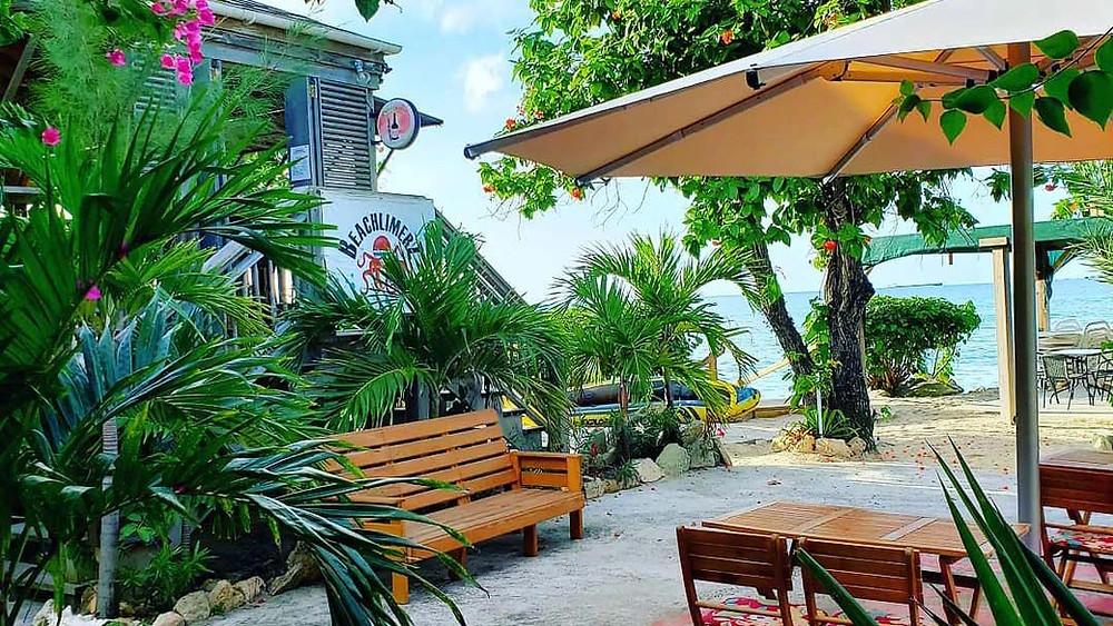 Beachlimerz, Barbados