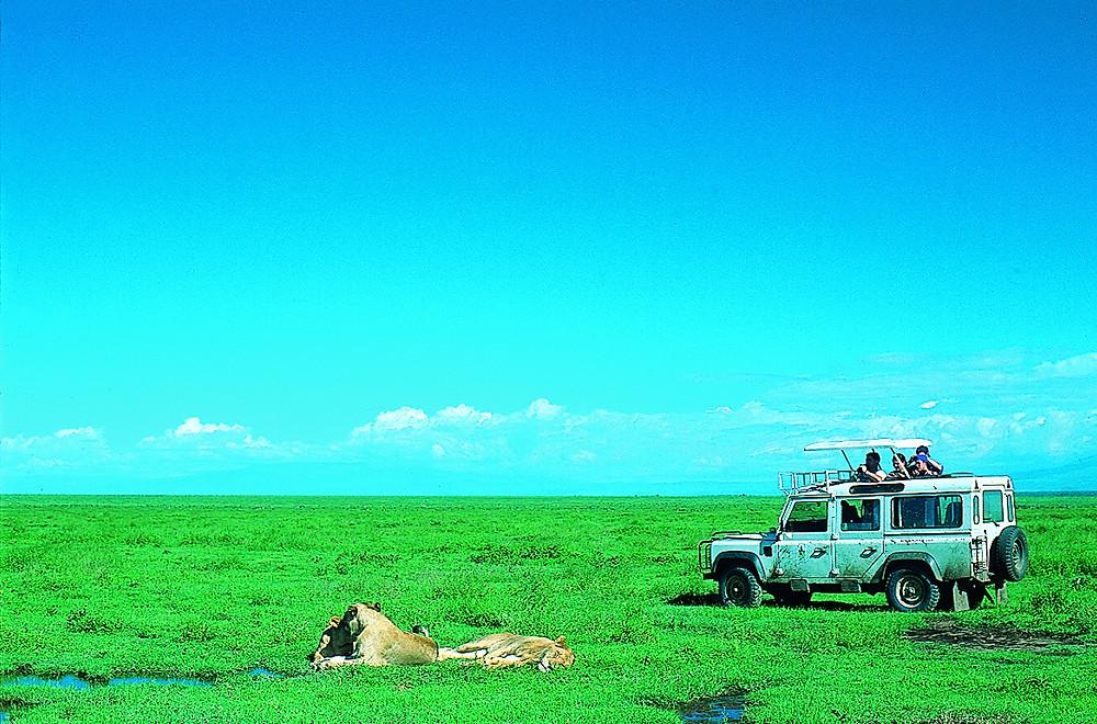 Crater Capers, Tanzania