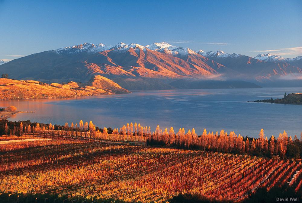 Lake Wanaka, New Zealand Tour