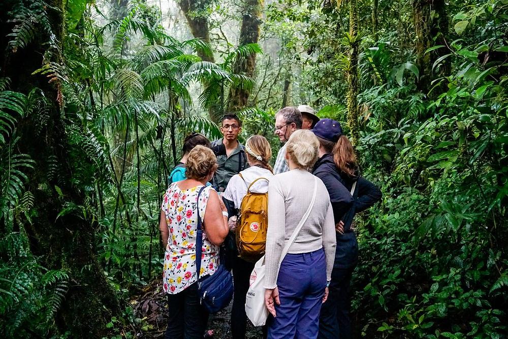 Monteverde Cloud Forest Biological Preserve, Costa Rica. Photo courtesy of Intrepid Travel.