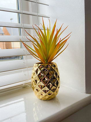 Pineapple Planter with Succulent