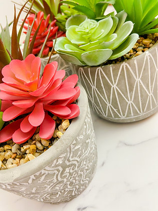 Patterned Cement Planter