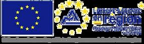 Logo FSE_2019.png