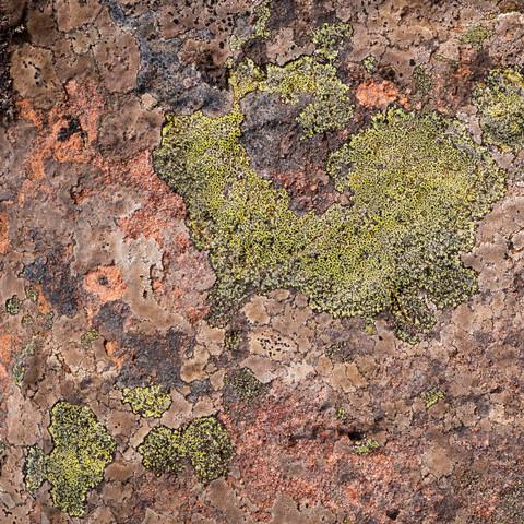 Torridon Rock