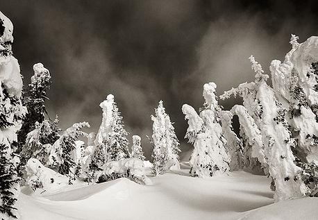 Winter scene in montana black and white photograph by Scott Wheeler