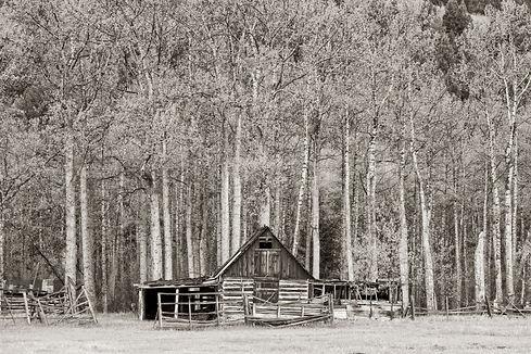 rustic barn photography by scott wheeler