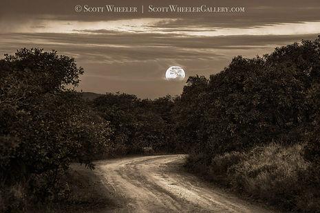 Setting full moon black and white photograph by Scott Wheeler
