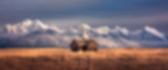 Montana homestead landscape photography by Scott Wheeler