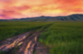 muddy road at sunset landscape photography by Scott Wheeler