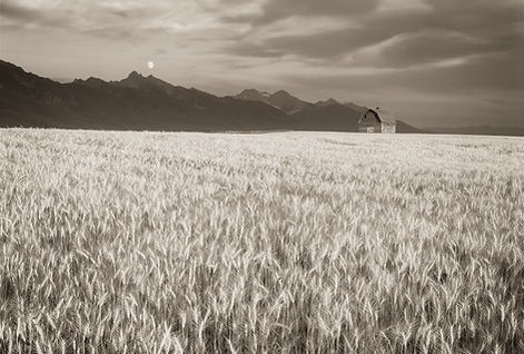 Rustic barn in Montana black and white photograph by Scott Wheeler