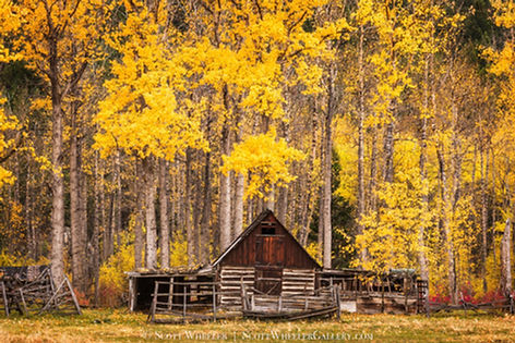 Log barn in Montana landscape scenic by Scott Wheeler Photography
