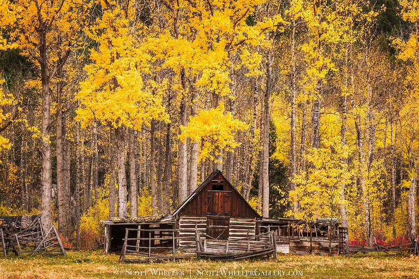Scott Wheeler Log Cabin Barn Fall Autumn Color Photography