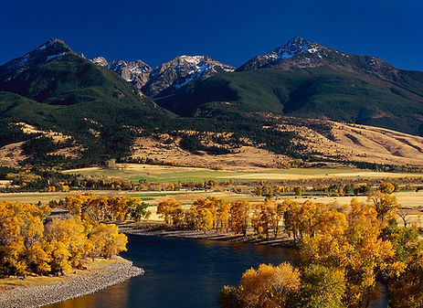 Autumn Fall Color on Yellowstone River Montana
