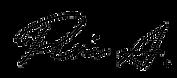 スクリーンショット_2021-01-17_5.54.44-removebg-pr