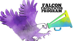 falcon facilitator.jpg