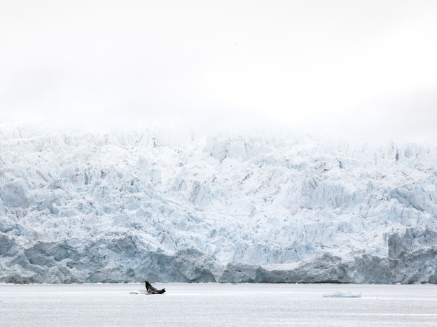 Glacier dans la brume
