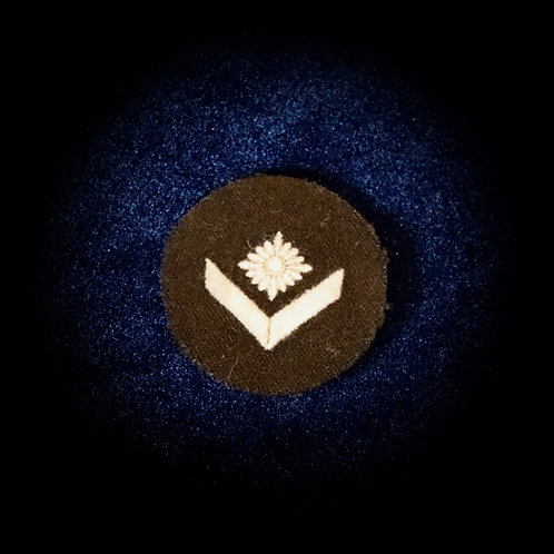DJ/HJ insignia