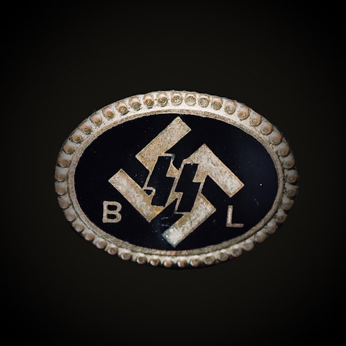 Flemish SS BL badge