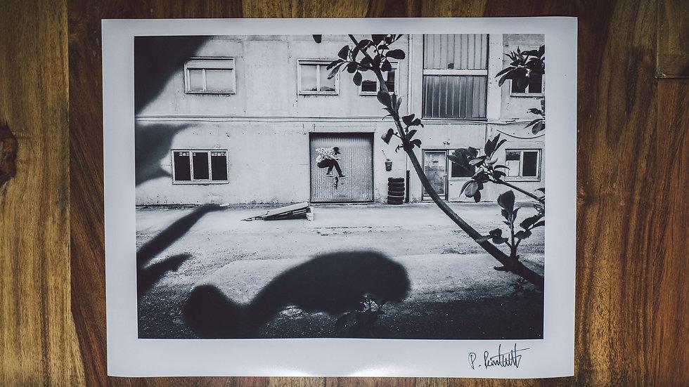 """Photoprint, Motiv """"DIY Skate x 360flip"""", 28cm x 21cm"""